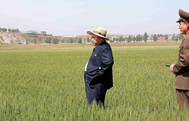 ЦРУ ждет провокационных действий Северной Кореи вДень Колумба