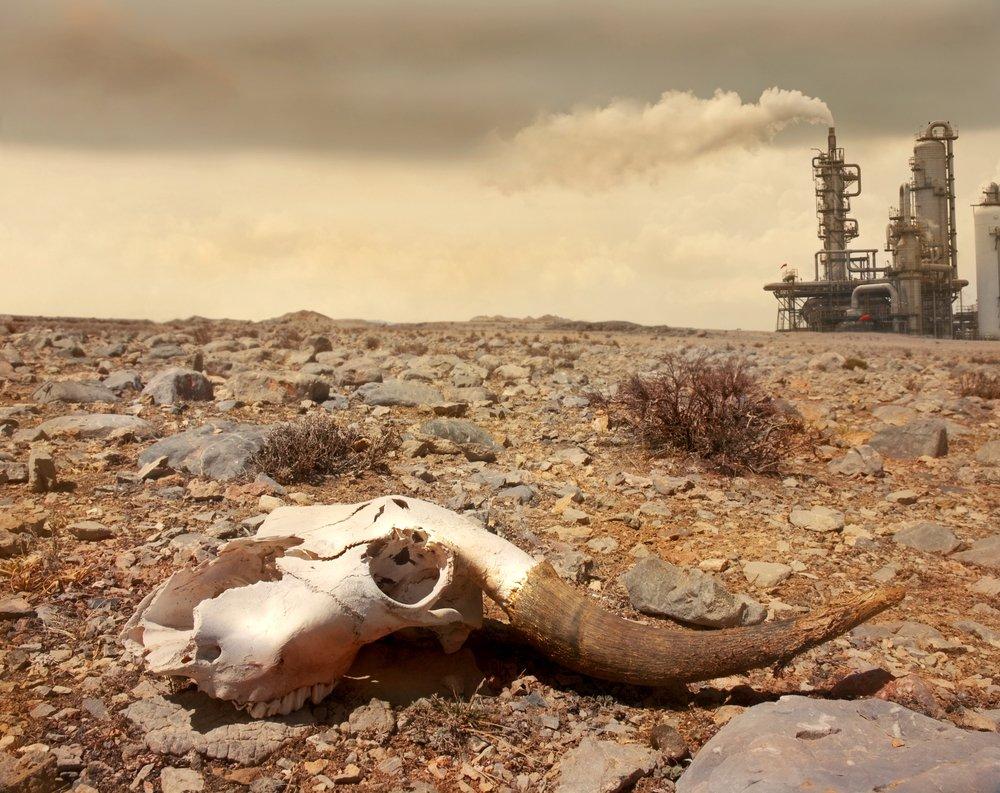 Земля вошла воблако астероидов Смерти— Конец света недалёко