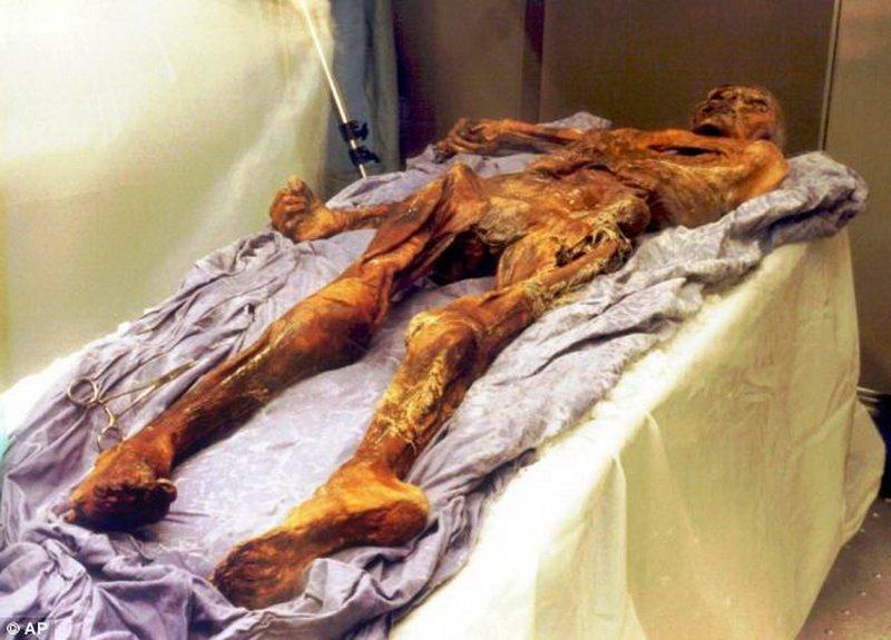 Ученые: отчизна «альпийского ледяного человека» находится вШвейцарии