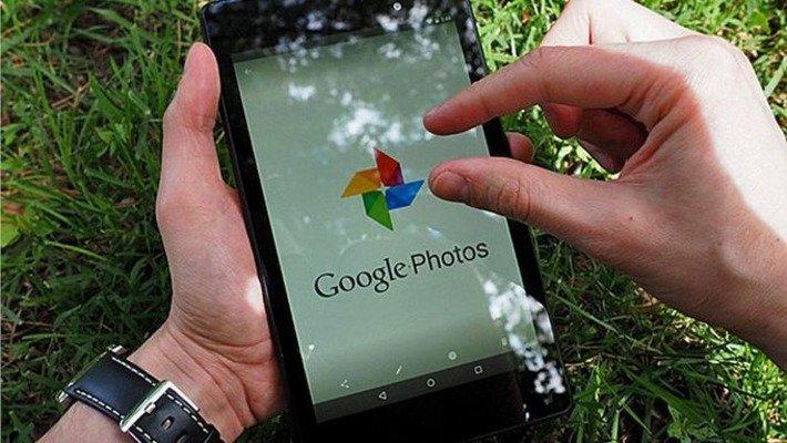 Google Photos научился распознавать фотографии домашних питомцев
