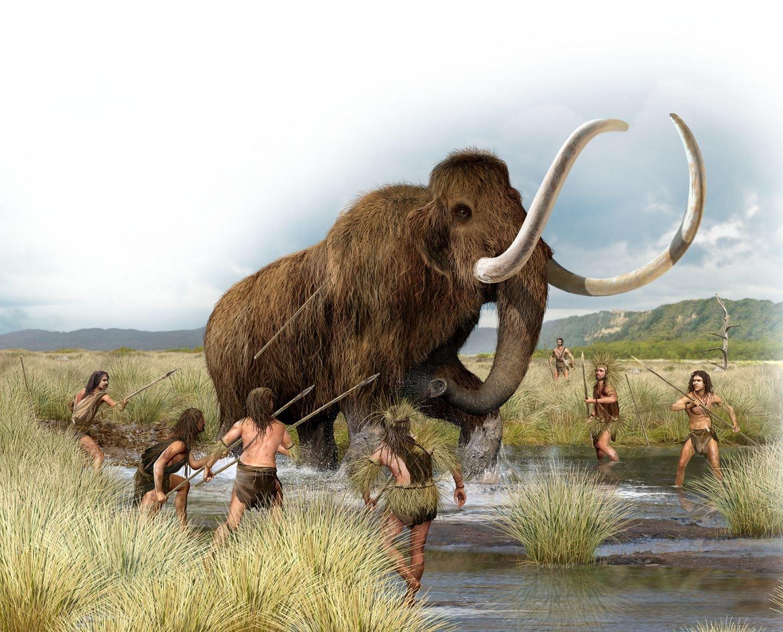 картинки охота на мамонтов