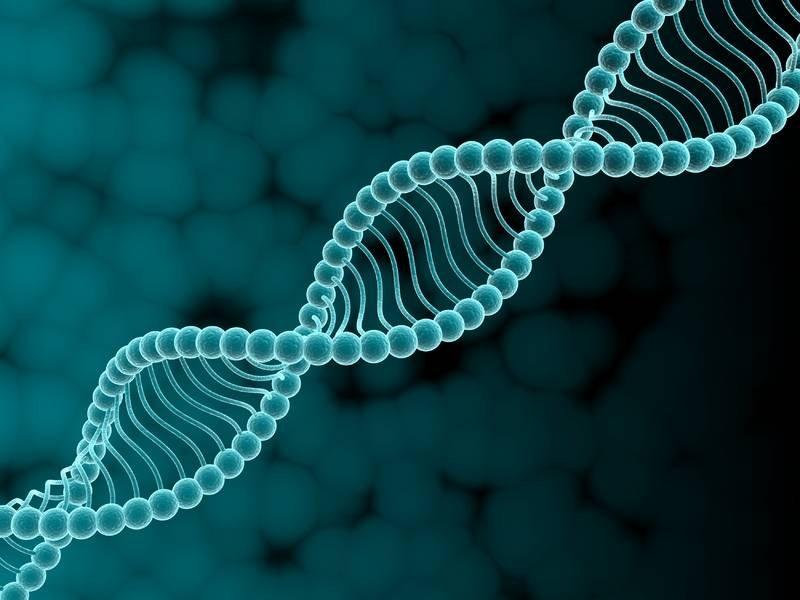 Ученые поведали, почему старение организма нереально остановить— Утопия
