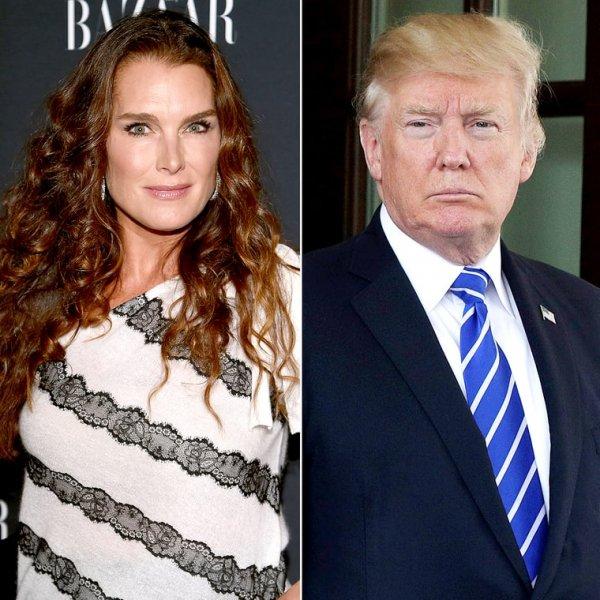 Брук Шилдс рассказала о том, что ее домогался Дональд Трамп