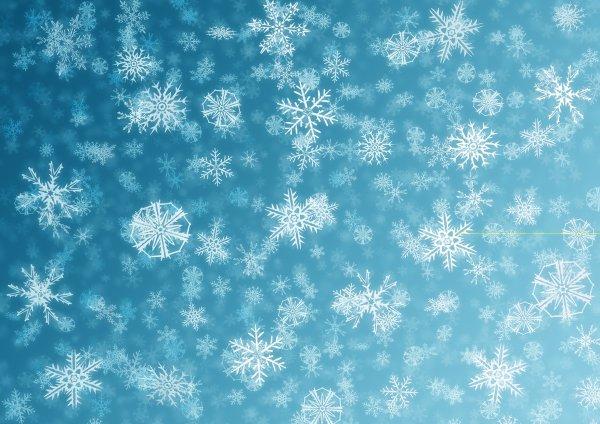 Первый снег сегодня выпал в Подмосковье