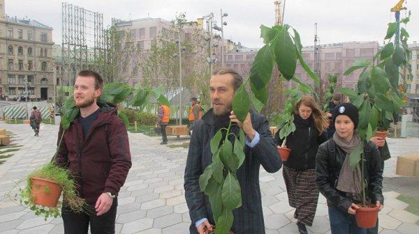"""Вырастив два вида авокадо, Децл подарил их парку """"Зарядье"""" в Москве"""
