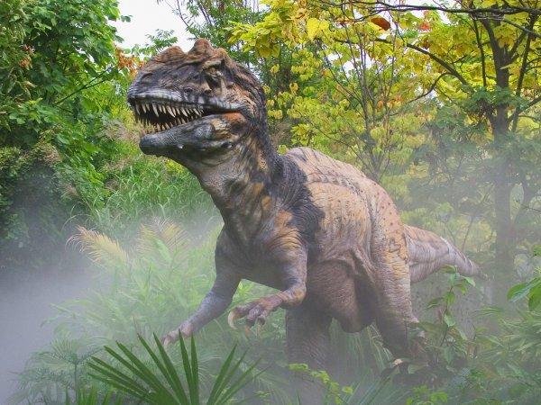 Ученые сообщили о любви динозавров общаться и прижиматься друг к другу