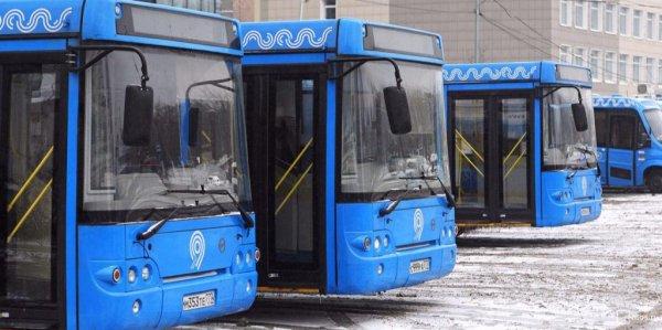 В Москве около закрытых станций метро начали курсировать бесплатные автобусы
