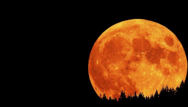Ученые: граждане Земли 4ноября увидят Луну намаксимально недалёком расстоянии
