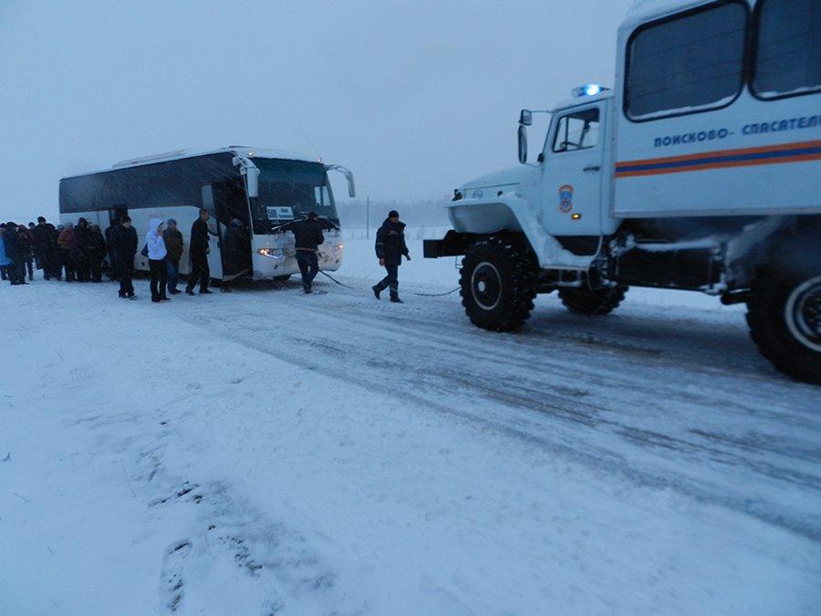 Ночью в Красноярском крае в тайге застрял автобус с 22 детьми