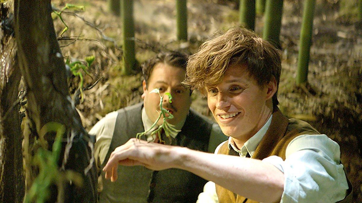 Джуд Лоу вновом кинофильме сыграет юного доктора Дамблдора