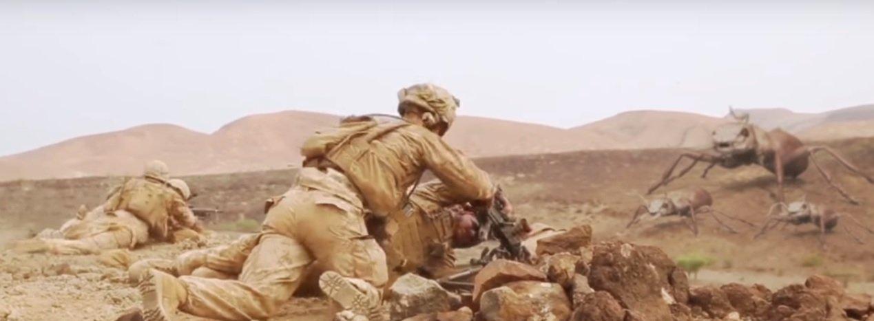 СМИ: На военных в Афганистане напали гигантские муравьи