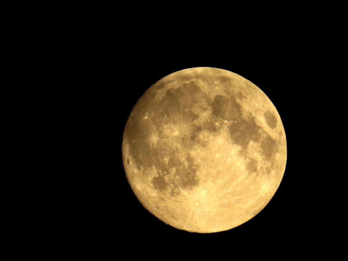 Стало известно о превосходных планахРФ поколонизации Луны— Космическая сверхдержава