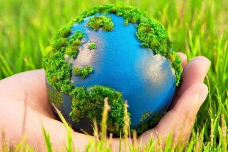 Мособласть вошла в число лидеров РФ в управлении охраной окружающей среды