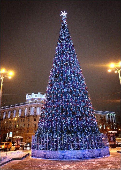 На московских вокзалах 7 декабря начнут устанавливать новогодние елки