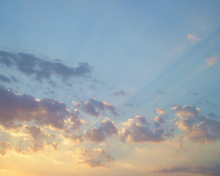 В Сети появилось видео «неизвестного быстродвижущегося объекта» в небе над аэропортом