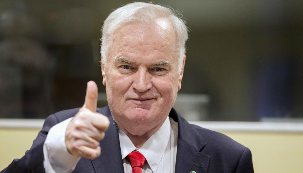 Володин поручил проработать возможность принятия заявления Думы по приговору Младичу
