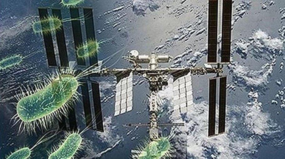 Ученые обнаружили наповерхности МКС живые бактерии изкосмоса