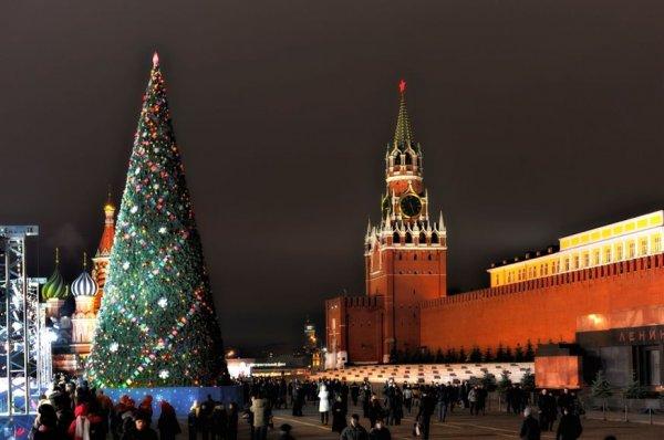 В Кремле главная новогодняя елка появится 17 декабря