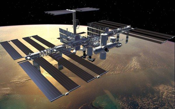 Роскосмос готовит к отправке на орбиту первого космонавта из ОАЭ