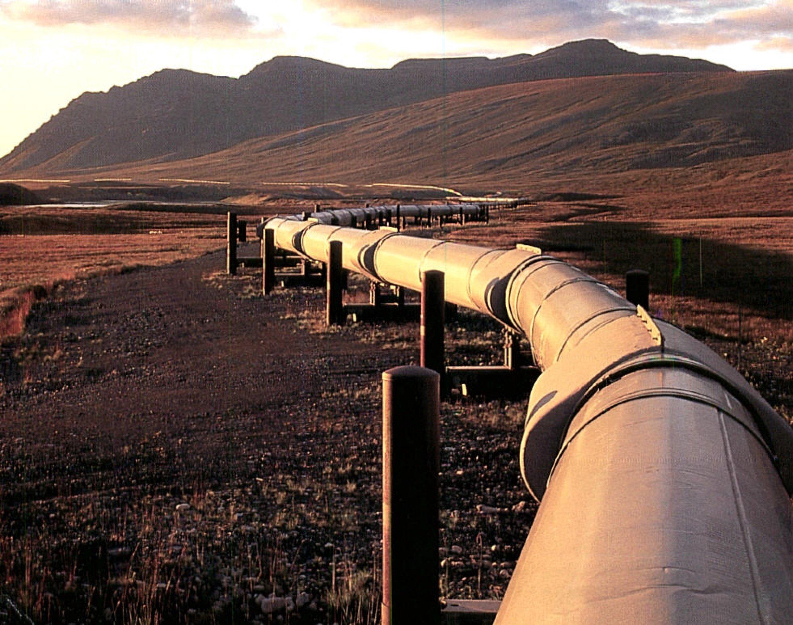 ВБашкирии граждане Татарстана воровали нефть удочерней компании «Роснефти»