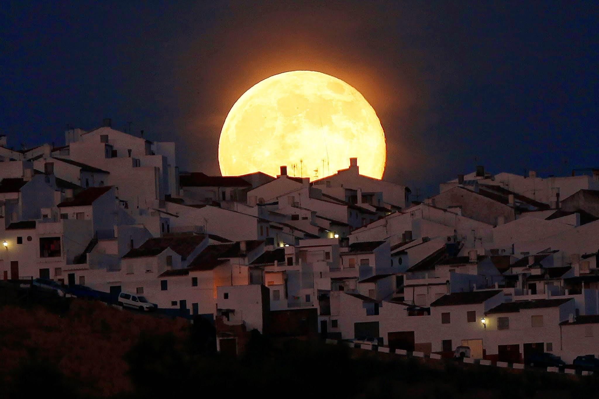 Ученые сообщили омаксимальном сближении Луны иЗемли