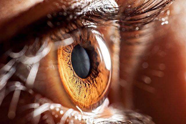 Клей для глаз вылечит пациентов отпроникающих ран— Ученые