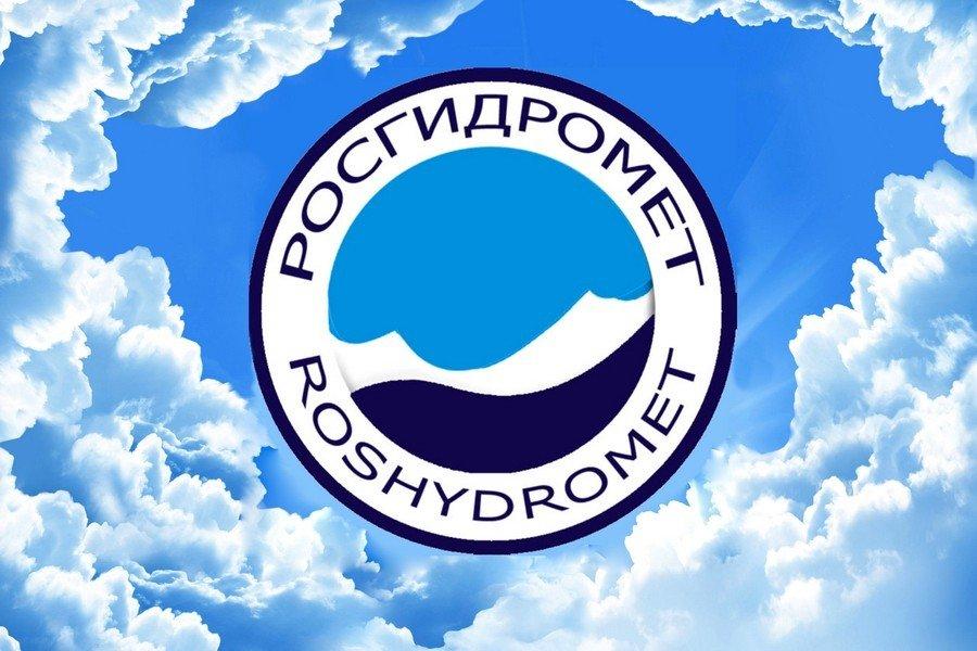 ВРосгидромете пояснили происхождение запаха сероводорода в столице России