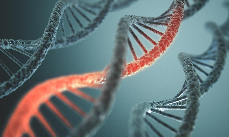 В Российской Федерации каждый девятый имеет страшную для жизни мутацию генов