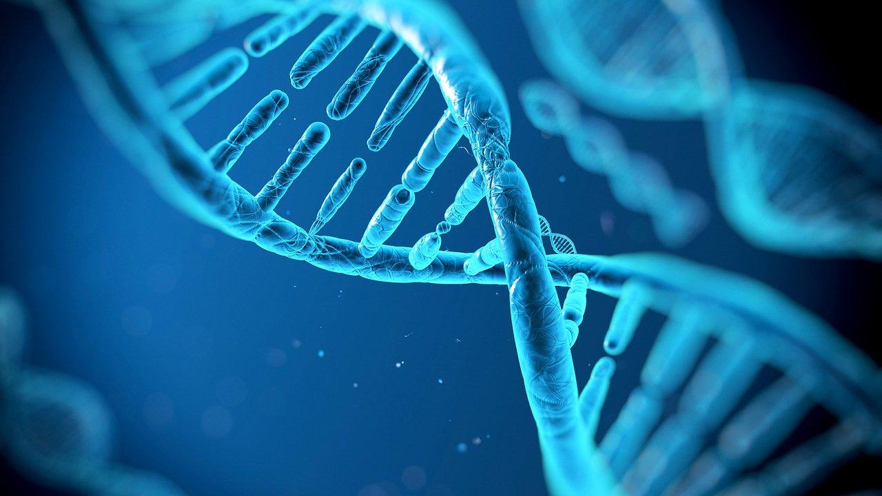 Генная терапия благополучно излечила «болезнь цесаревича Алексея»— Ученые