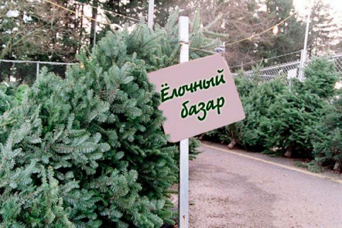 Неменее 400 елочных базаров будет работать вПодмосковье