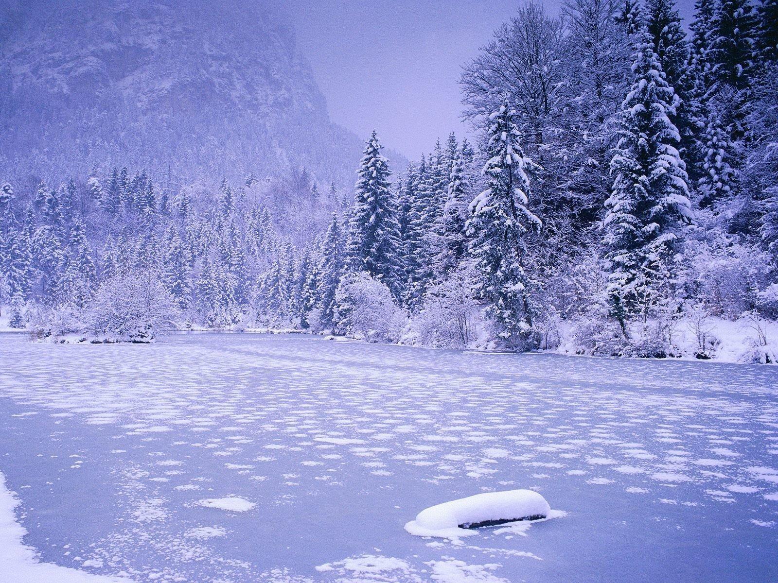 Брат исестра погибли, провалившись под лед реки вЛенобласти