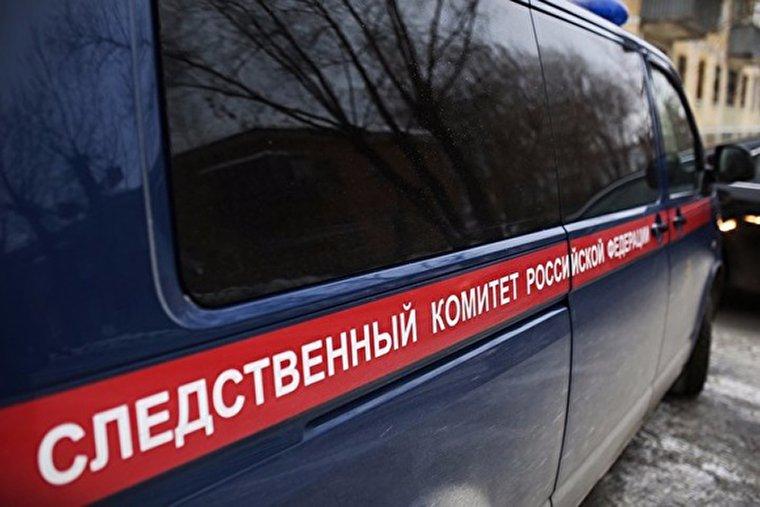 33-летняя нижегородка подозревается вубийстве малыша