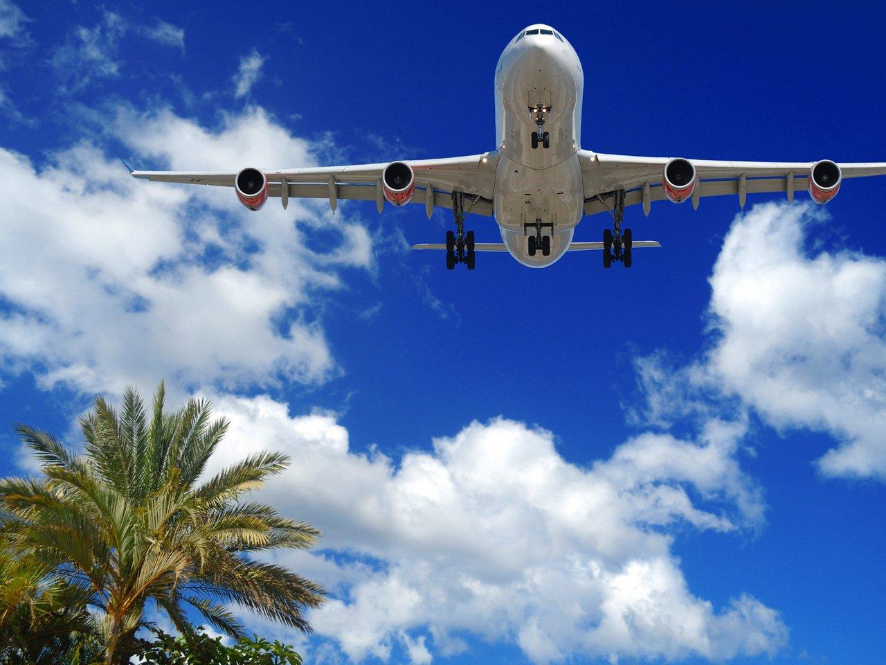 ВСША самолёт вернулся ваэропорт из-за птицы наборту