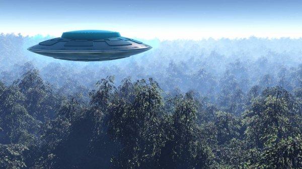 В Небраске зафиксированы несколько НЛО. Уоринг подтверждает, ВВС отрицают