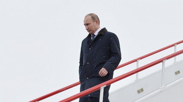 Путин приказал начать процедуру вывода войск из Сирии