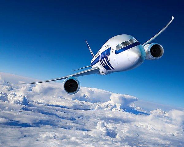 Самолет экстренно приземлился в Волгограде из-за пассажира-курильщика