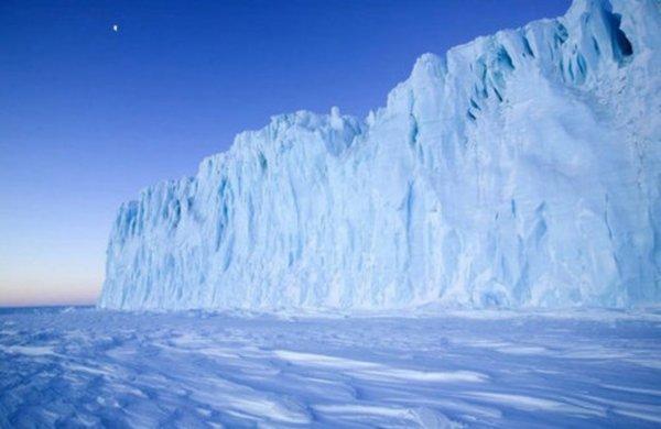 Микробы могут выжить даже в «стерильном» снеге на полюсе – Ученые