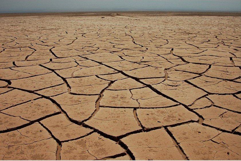Начетверть пустыня: ученые предрекли засуху