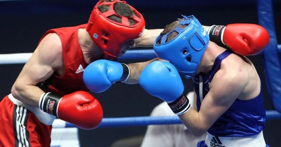 Власти Швеции могут запретить профессиональный бокс