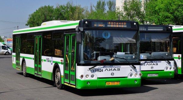 Суд Москвы арестует водителя автобуса, съехавшего в подземный переход