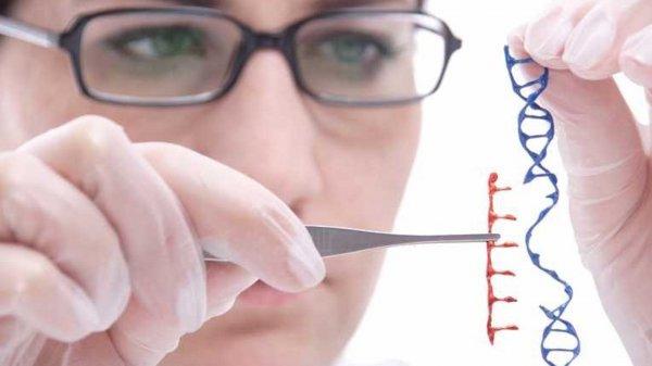 Ученые: Редактирование генов не работает у человека