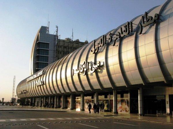 Аэропорт Каира обесточился из-за бездомной кошки