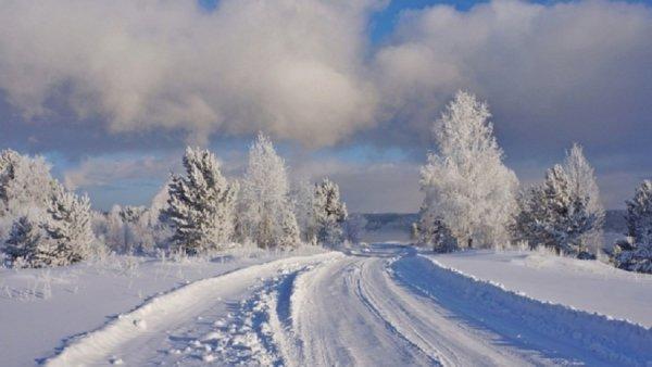 В Бийске замерзли насмерть 87-летняя бабушка и ее 40-летний внук