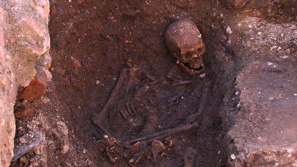 В Израиле ученые обнаружили самые древние останки человека
