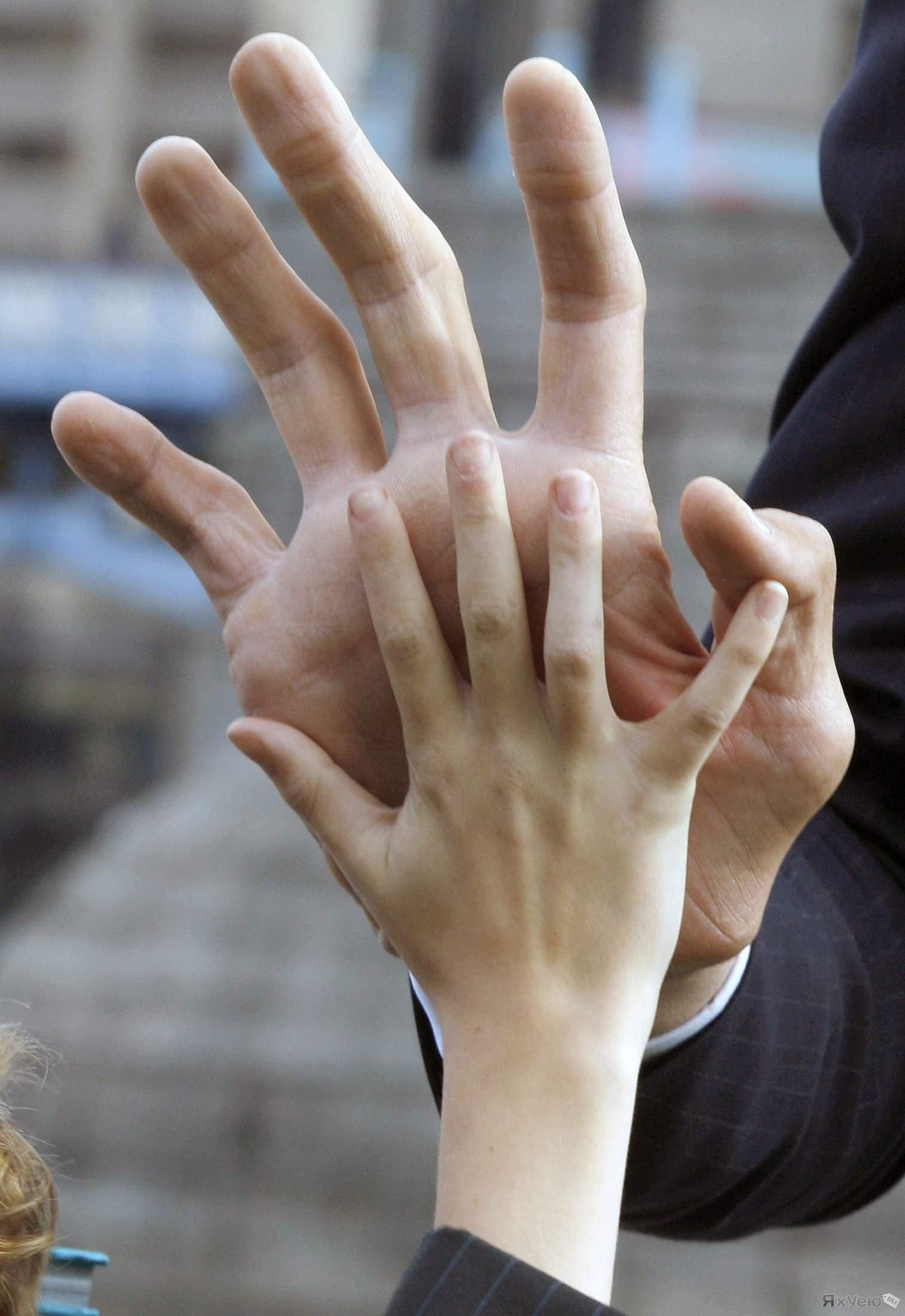 Определение сексуальной ориентации по размеру пальцев