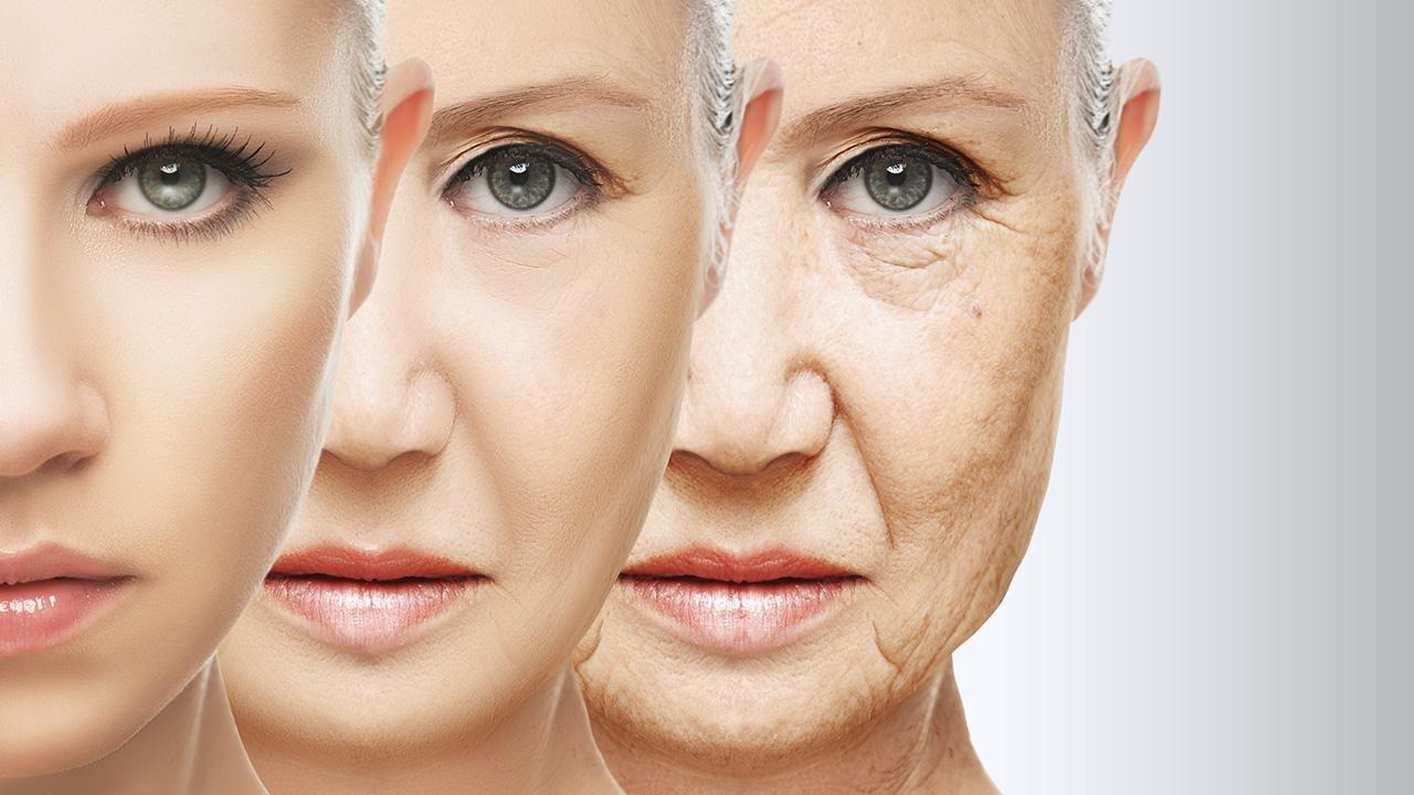 Ученые изсоедененных штатов раскрыли, чем отличается мозг долгожителей