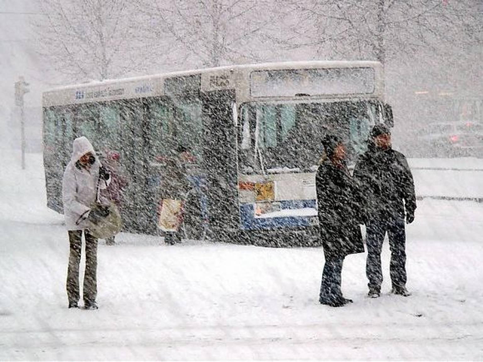 В российской столице из-за морозов увеличили число автобусов нагородских маршрутах