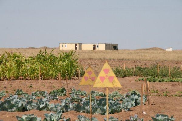 Жителей Ярославской области ошибочно уведомили о радиоактивном выбросе