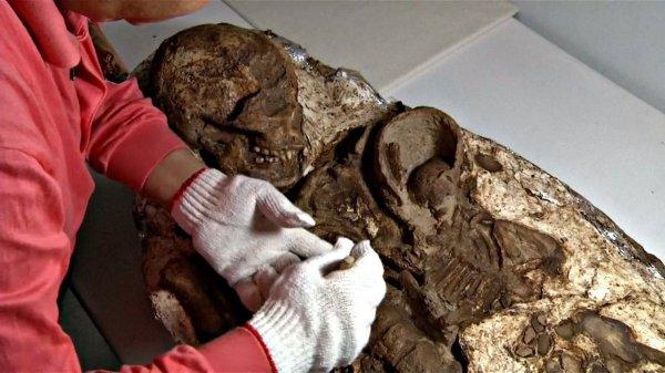 В Нидерландах найдено погребение женщины с младенцем эпохи неолита