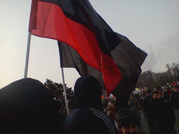 Власти Киева разрешили развешивать по городу бандеровские флаги